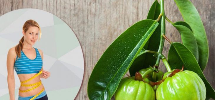 Is Garcinia Cambojia Effective?