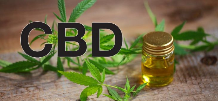 CBD AND THC: DIFFERENCES YOU SHOULD KNOW ABOUT